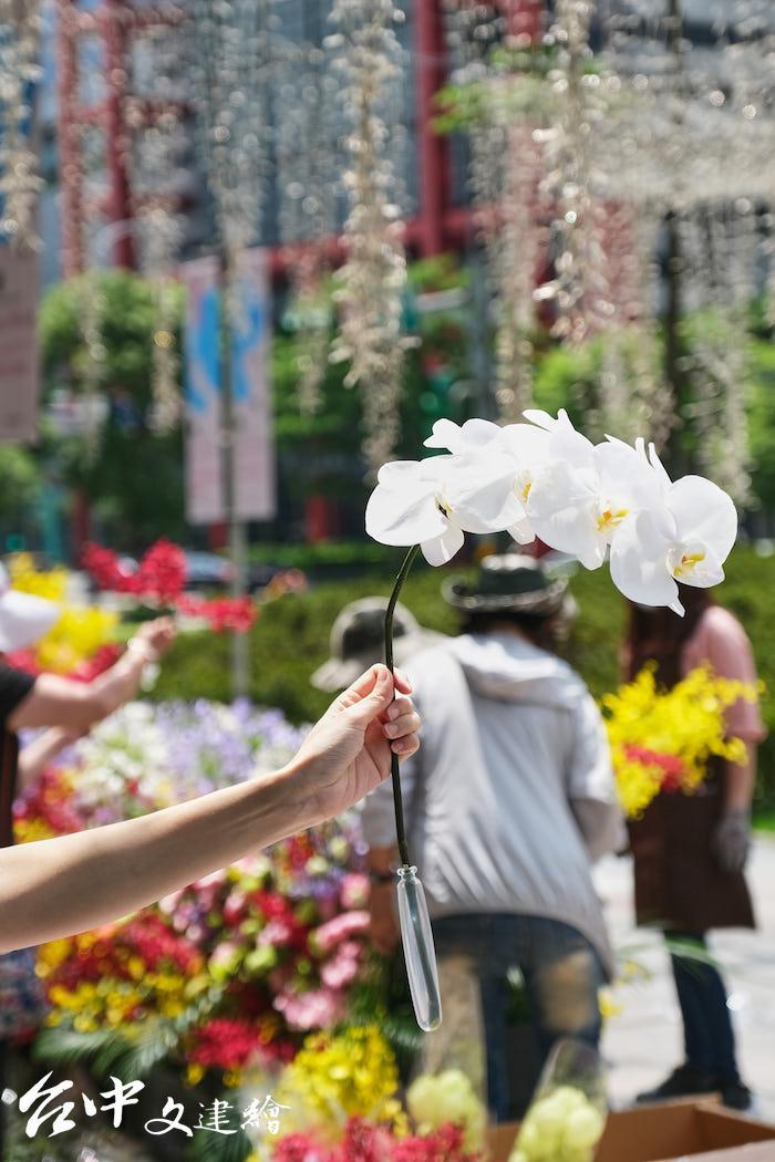 國產蘭花需要大水管道具,才能在戶外渡過三天。(圖:業者提供)