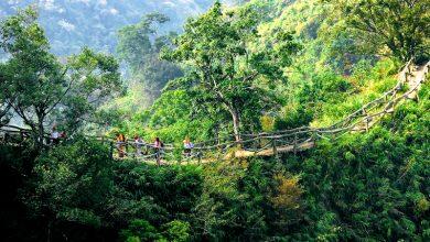 大坑五號登山步道(圖:台中市政府)