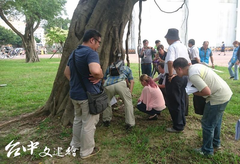 與會人員觀察台中市中山堂樹木狀況(圖:台中市文化局)